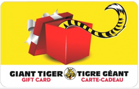 Day 6 of the Taylor Kaye Giveaway – Giant Tiger!
